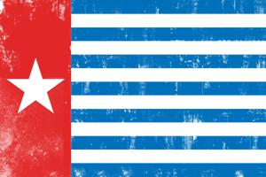 Bildergebnis für free west papua campaign