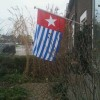 Photos from global day of action for West Papua photo 10