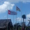 Photos from the Global Flag Raising for West Papua photo 186