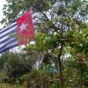Photos and thanks after Global Flag Raising for West Papua! photo 63